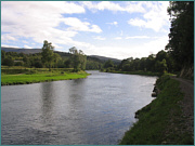 River Spey Sea Trout Fishing